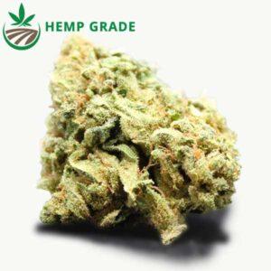 Buy Grape Ape Hemp Flowers Online