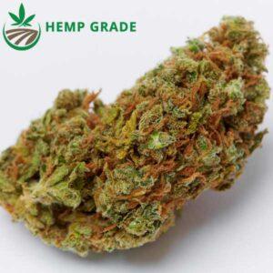 Buy CBD Blüten Orange Bud