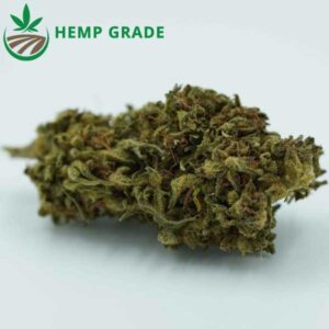 Buy Purple Haze CBD Hemp Flower Online