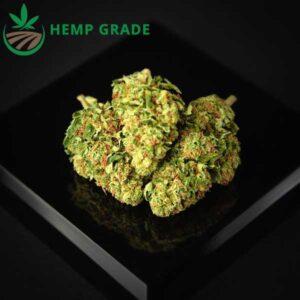 Buy Strawberry Diesel CBD Hemp Flower Online